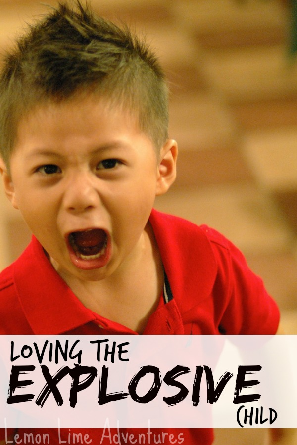Loving The Explosive Child
