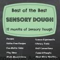 Best of the Best Sensory Dough