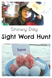 Snowy Day Sight Word Hunt