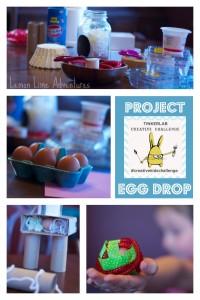 Project-Egg-Drop