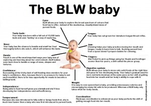 Baby Led Weaning Poster