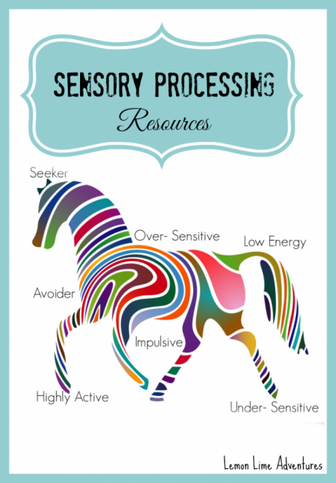 Sensory Processing Resources