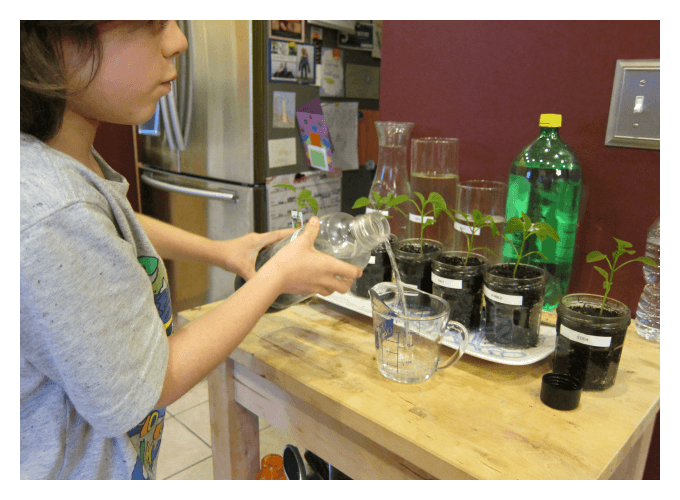 Measuring Liquids for Plant Science Fair Project
