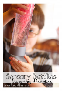 Sensory Bottles for Discovering Absorption