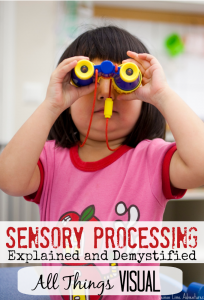 Sensory Processing Explained Visual Input