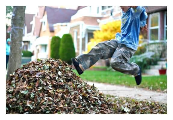 Sensory Benefits of Leaf Play