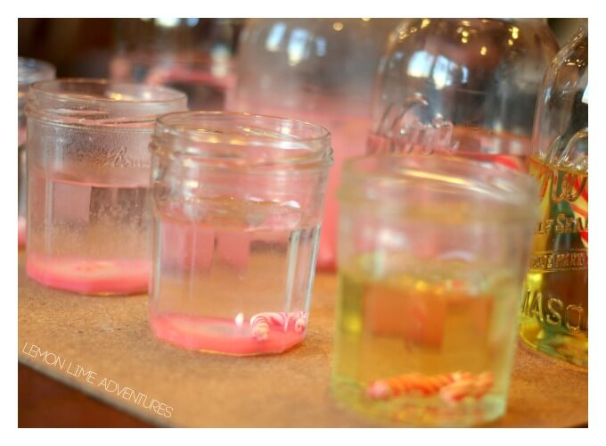 Candy Canes in Liquid Experiment