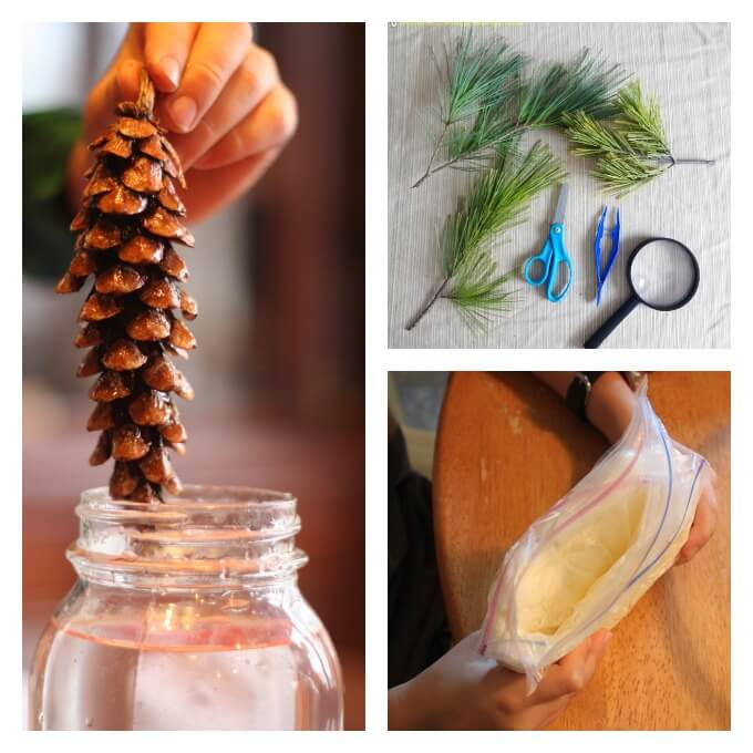 Winter Natural Science Experiments for Kids