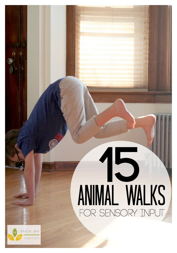 15 Animal Walks for Sensory Diet