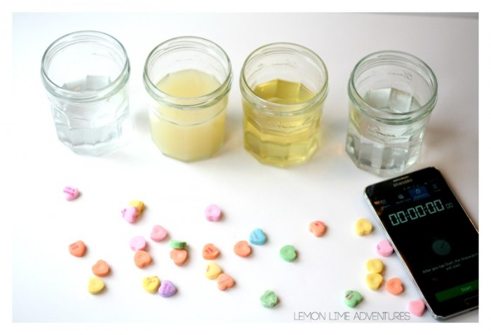 Dissolving Candy Hearts Experiment
