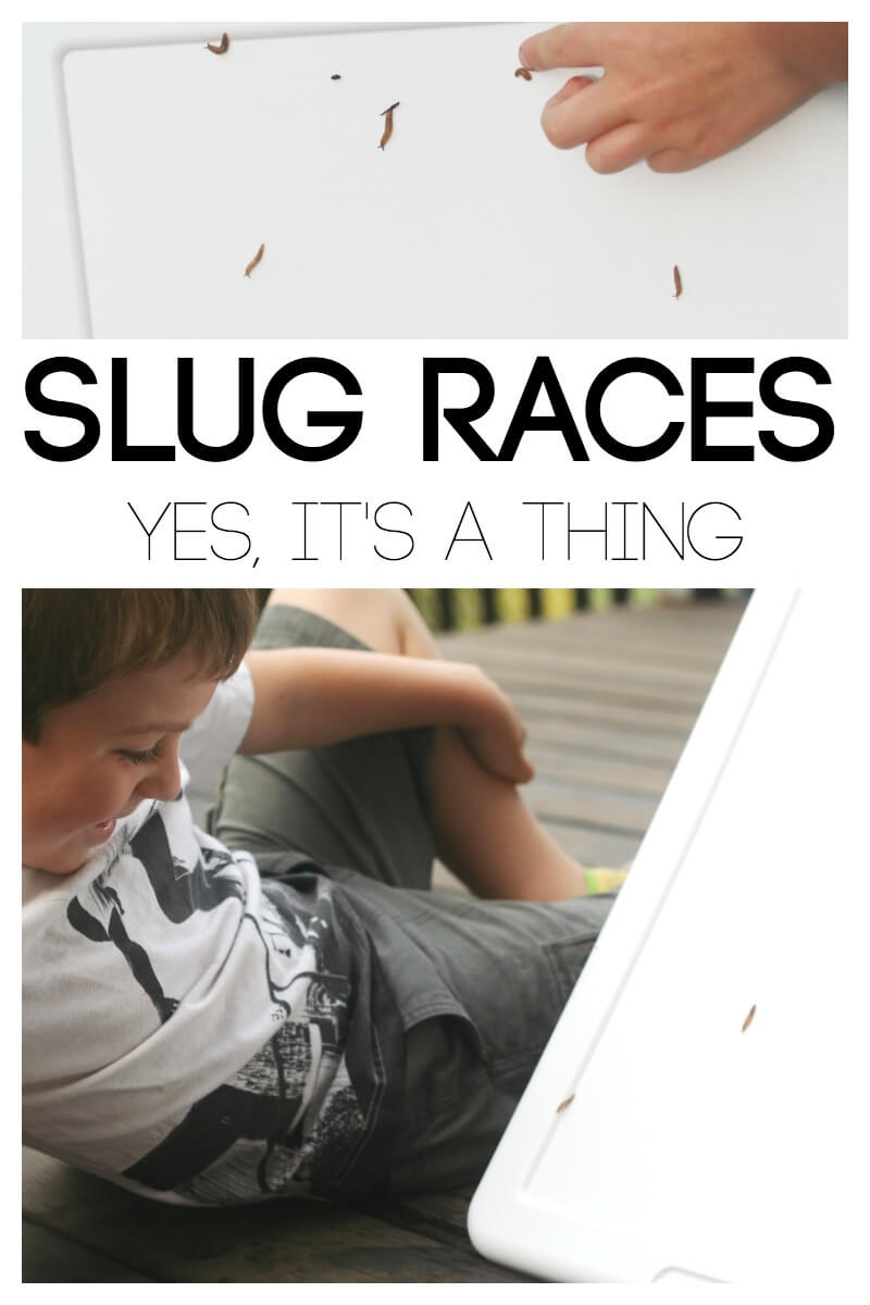 Slug Races