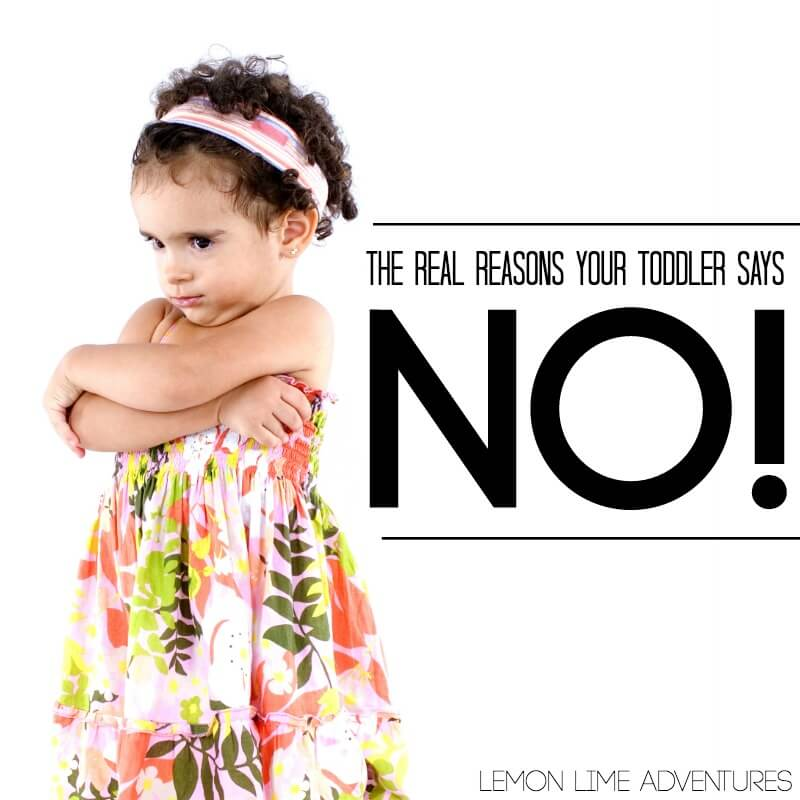 Why Does My Toddler Always Say No
