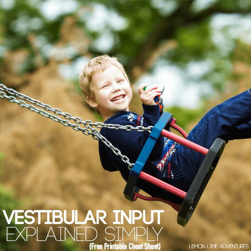 Vestibular Input Explained Simply