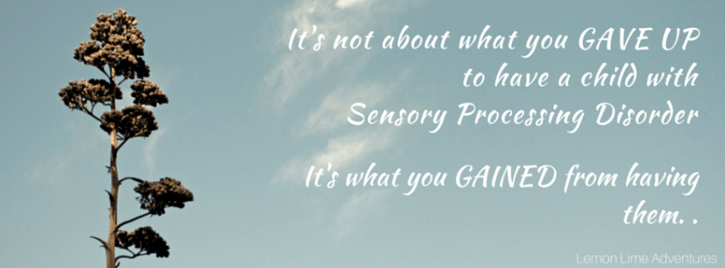 It's not about what you GAVE UP to raise a child with Sensory Processing Disorder