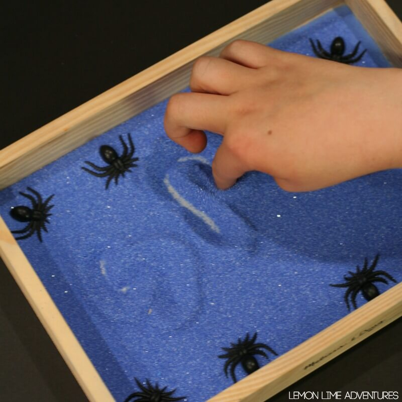 Nocturnal Animals Sand Tray for Writing