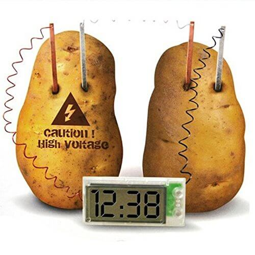 Potato Clocks for Kids