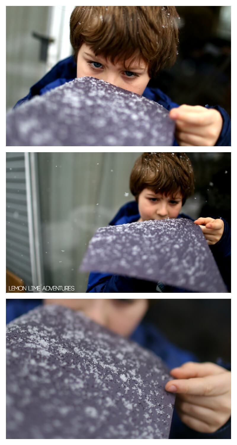 Observing Snowflakes and how to catch snowflakes without melting