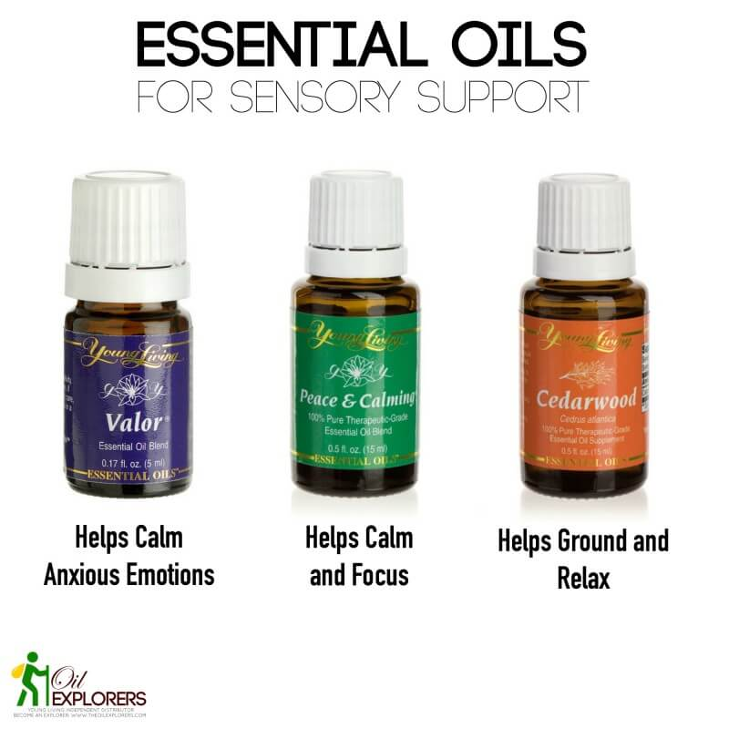 Beginner S Guide To Essential Oils For Sensory Needs