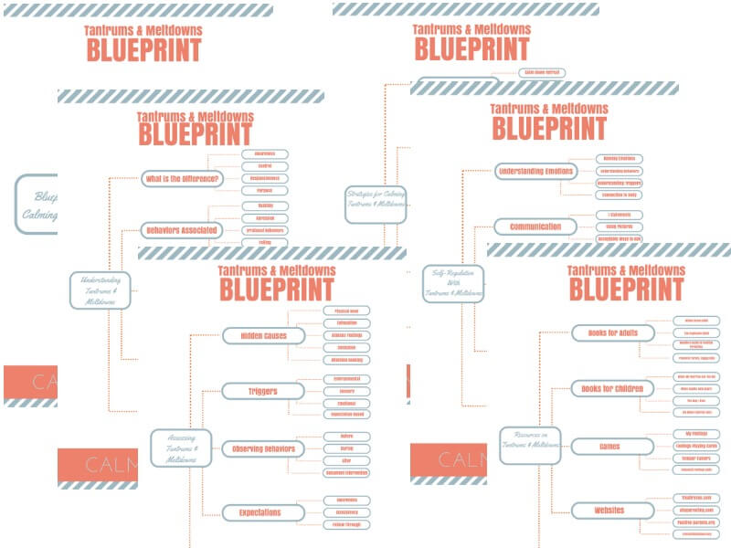 Blueprint Preview