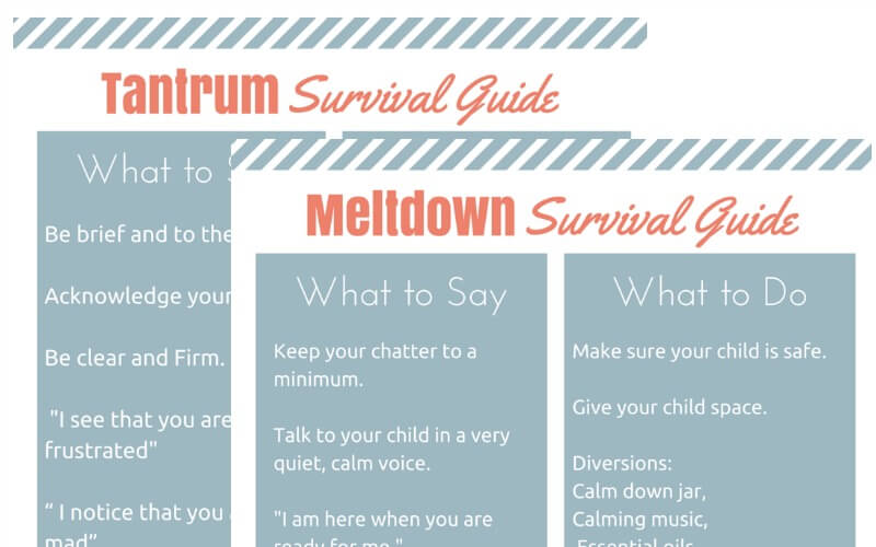 Sneak Peek Tantrum and Meltdown Survival Guide