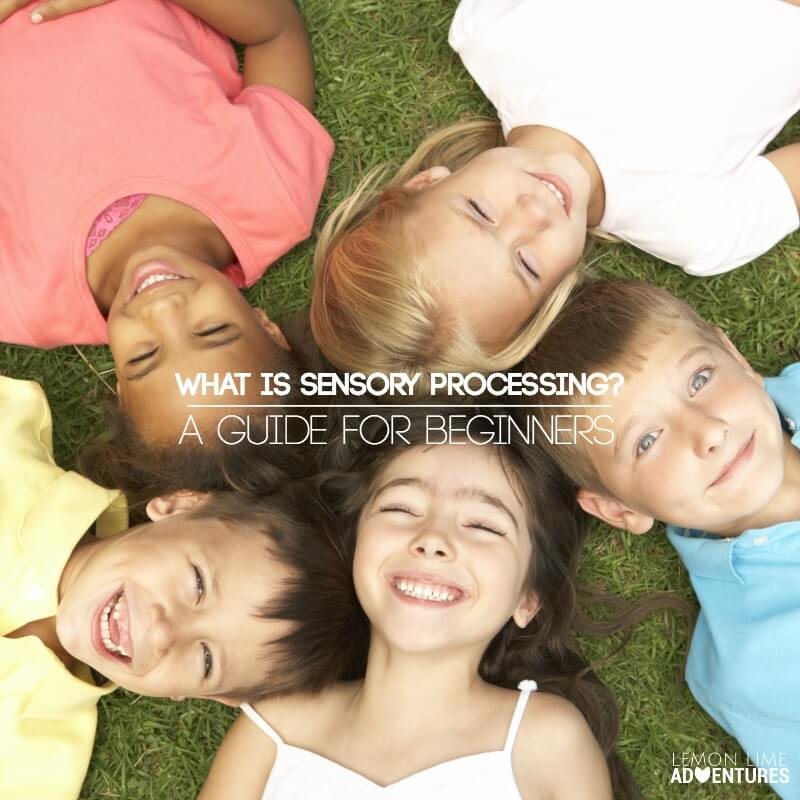 What is Sensory Processing A Beginners Guide