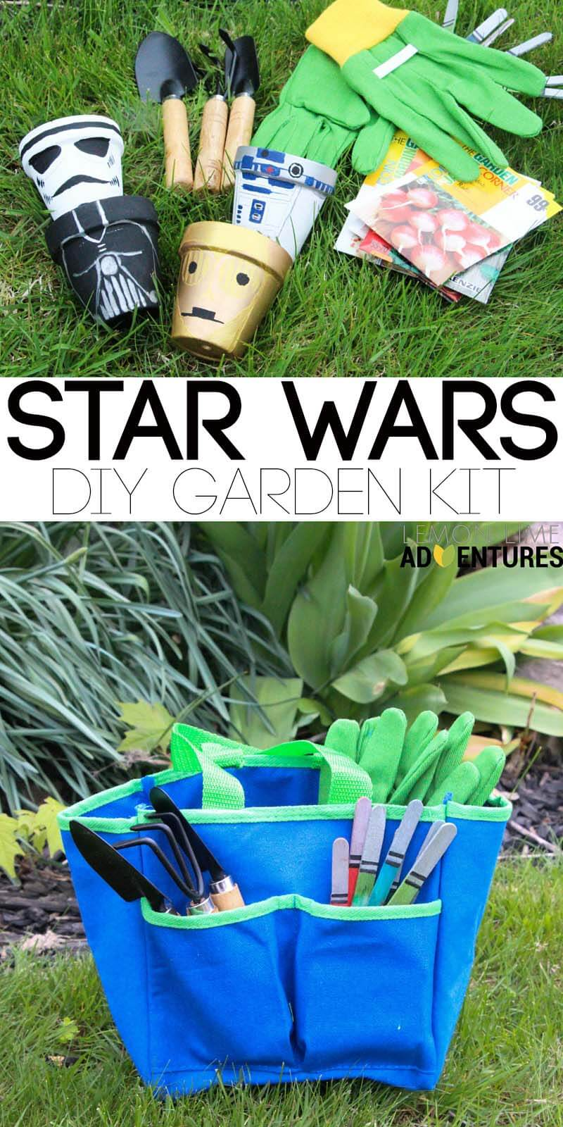 star wars garden kit pin