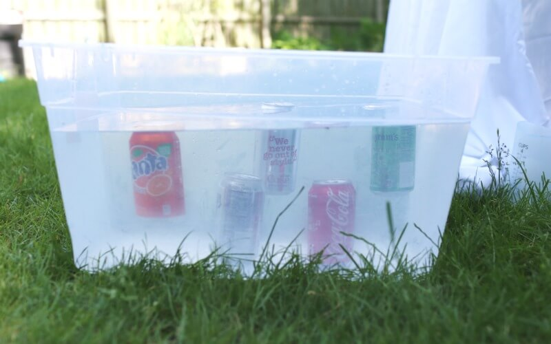 Sinking Soda Surprise Science Experiment for Kids