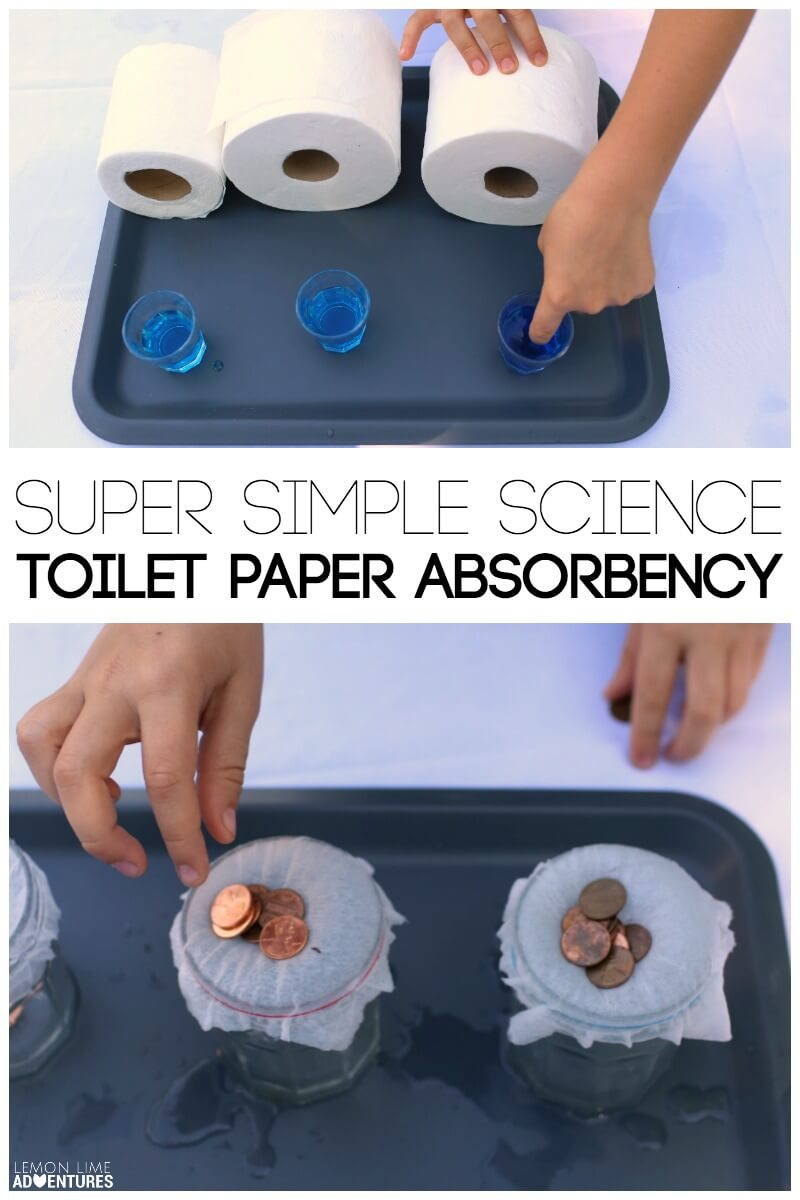 Super Simple Science Toilet Paper Absorbency