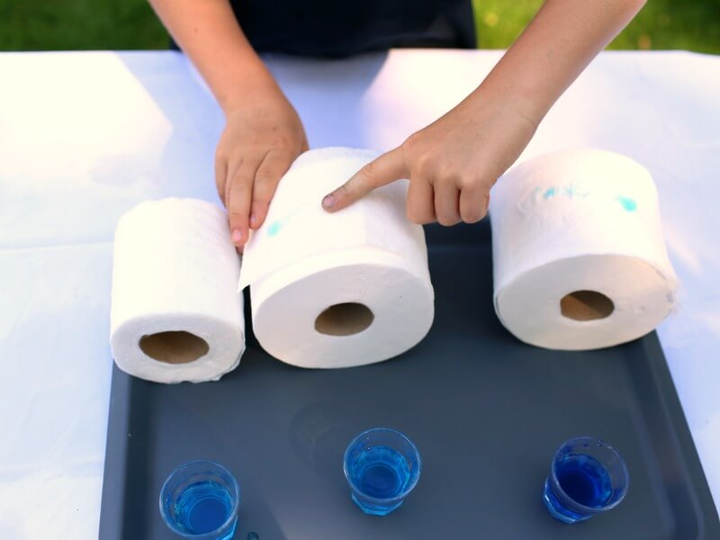 Simple Toilet Paper Absorbency Experiments for Kids