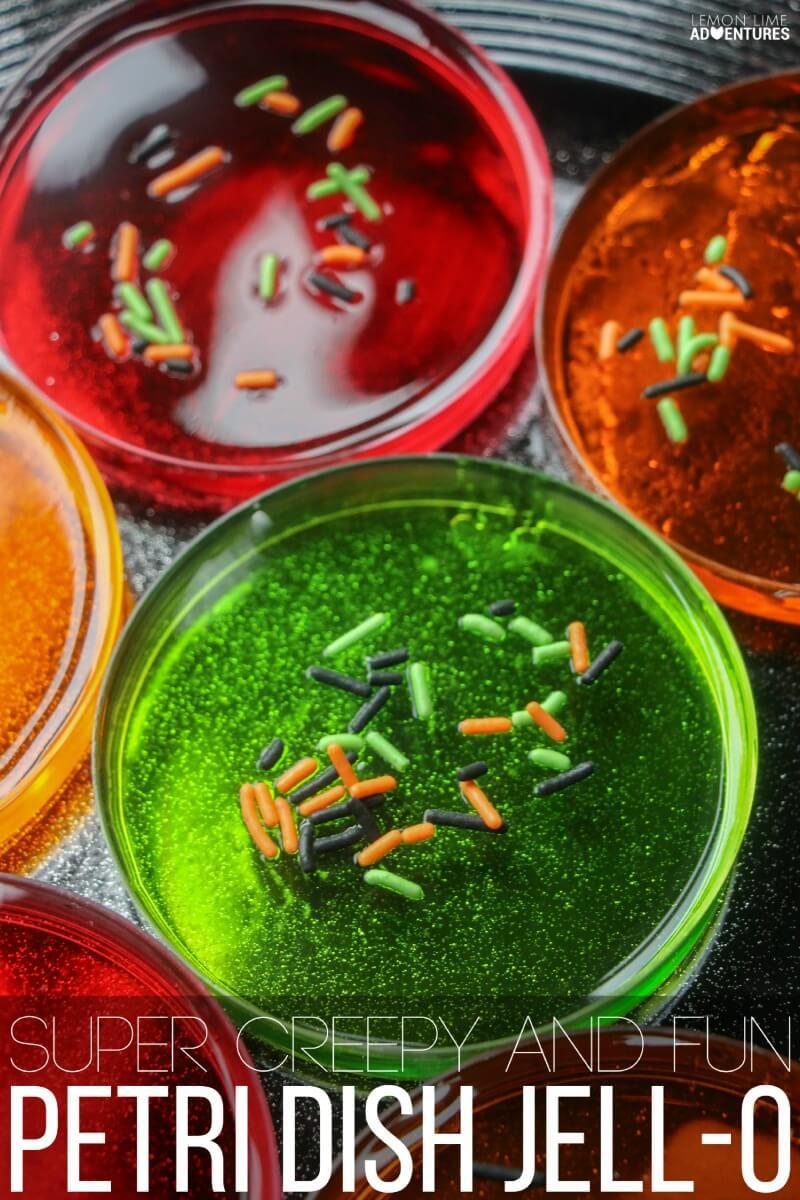 Super Creepy and Fun Petri Dish Jell-O
