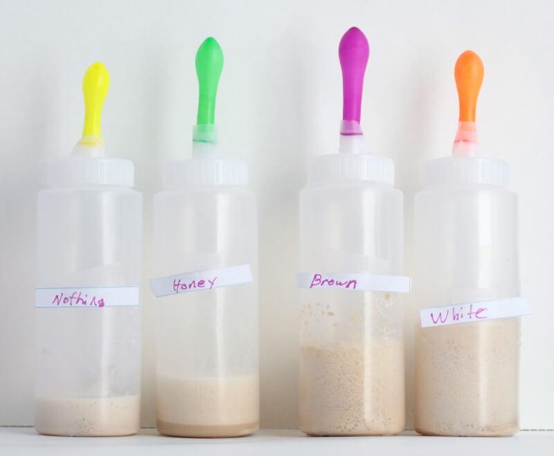 yeast-5