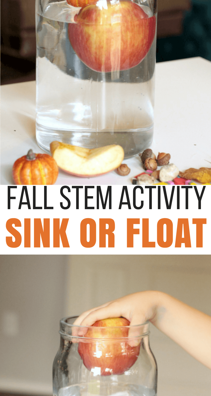 Fall-themed sink or float science experiment, the perfect Fall science activity!