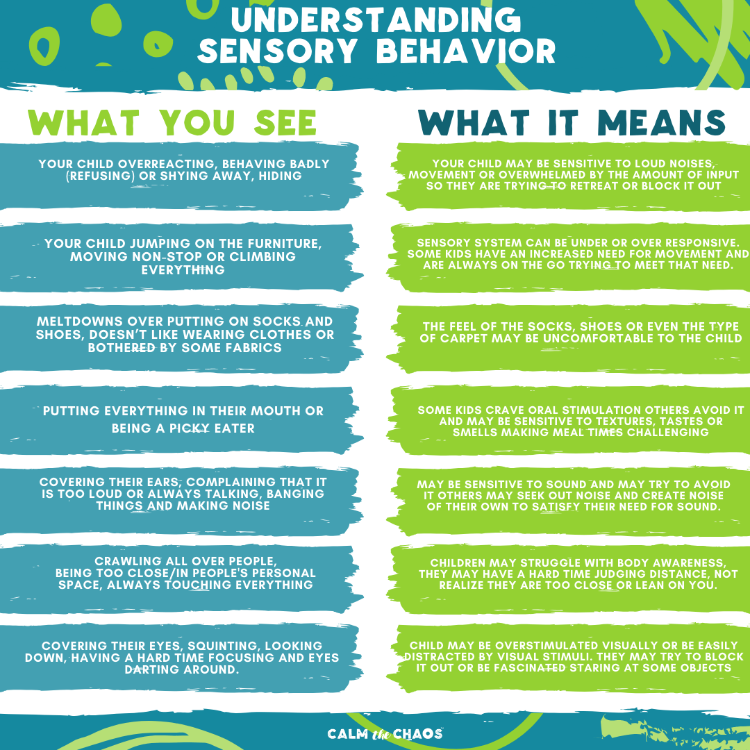 What is Sensory behavior